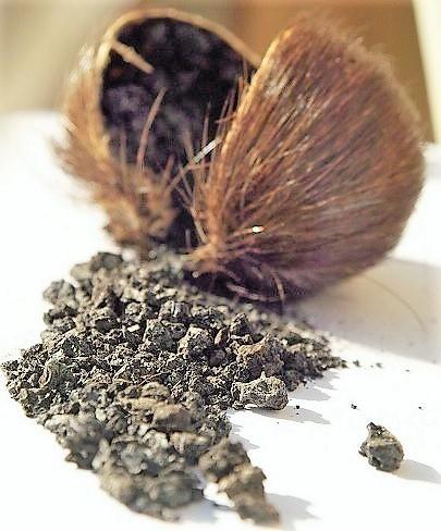 almizcle blanco en los perfumes