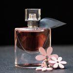 ⭐ Qué perfumes usan las famosas españolas